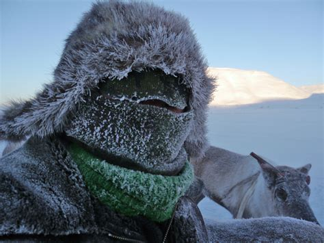 Image result for extreme cold