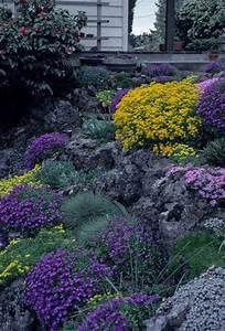 Pflanzen Für Trockenmauer : naturstein trockenmauer bepflanzen geignete pflanzen f r mauerfugen garten und blumen ~ Orissabook.com Haus und Dekorationen