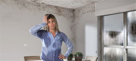 chambre humide que faire condensation des murs humides et ventilation maison