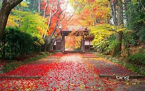 Autumn, In, Japan, Wallpapers