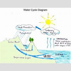 Water Cycle Diagram  Projects Pinterest