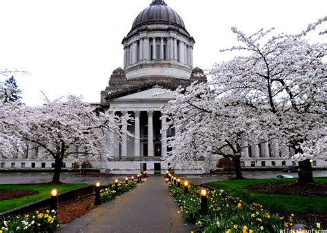 olympia washington with kids weekend itinerary photo