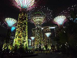 File:Supertree Grove, Gardens by the Bay, Singapore ...