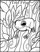 Frog Coloring Pages Adults Tree Frogs Printable Getcolorings Print Drawings Colorings sketch template