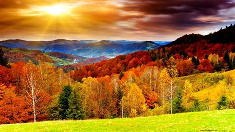 Top High Definition Wallpaper by Best Pictures Of Fall Season High Definition Autumn