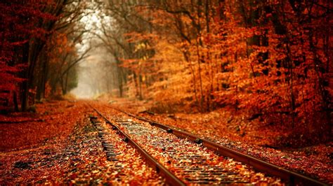 1920x1080 Hd Autumn Wallpapers (61+ Images