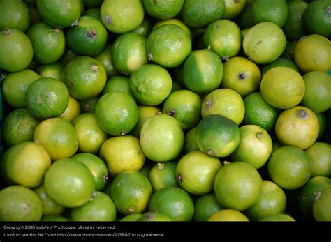 Small Round Green Fruit Yellow