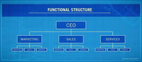 functional organization definition examples features