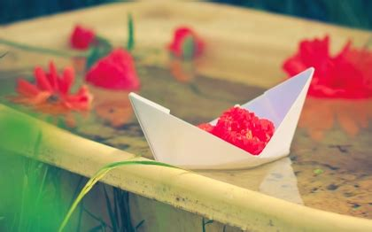 Origami Boat Definition by Water Flowers Papercraft Paper Boat Flowers Blurred