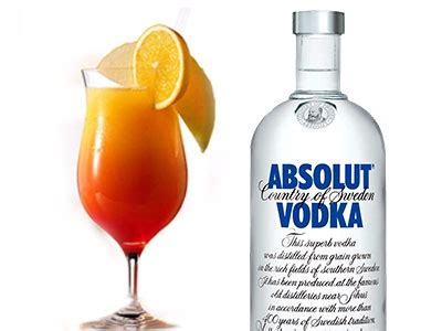 orange juice and vodka orange juice vodka recept restaurant