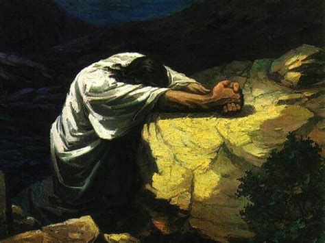 the agony in the garden a meditation for the wednesday of holy week holy