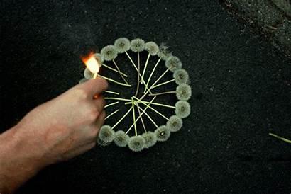 Chain Reaction Flowers Circle Burn Epic Random