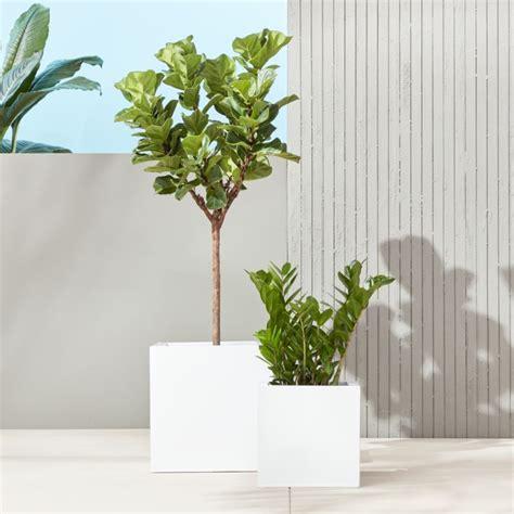 Big White Planters by Blox Hi Gloss Modern White Planters Cb2