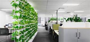 Sustainability + Plants = Perfect Match - Ambius Australia