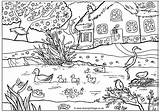 Coloring Pages Spring Ducks Pond Colouring Adult Garden Scenery Mewarnai Gardens Unicorn Gambar Detailed Printables Winter sketch template