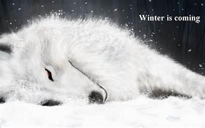 Winter Coming Fantasy Thrones Got