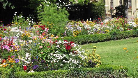 Backyard Flower Garden Design by Free Images Lawn Meadow Flower Backyard Botany