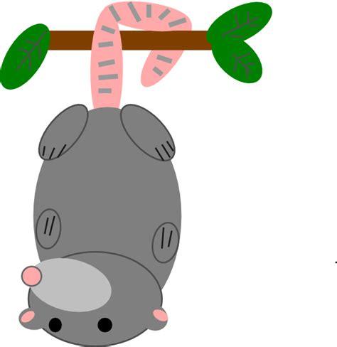 opossum clipart possum clip at clker vector clip