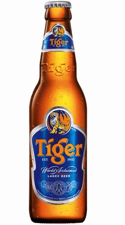 Tiger Beer 330ml Bottle Case Bottles Alcohol