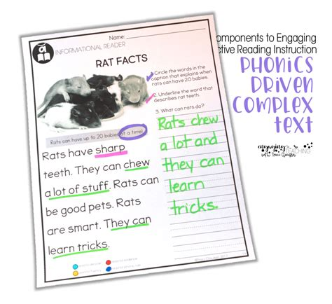 key components  effective  engaging reading