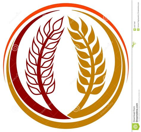 Grass Artwork by Wheat Grains Logo Royalty Free Stock Photography Image
