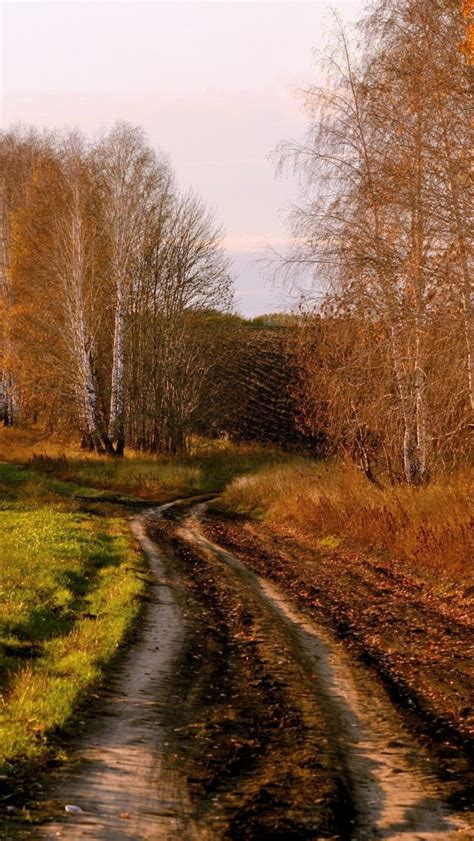 Fall Road Iphone Wallpaper by 640x1136 Country Road In Autumn Iphone 5 Wallpaper