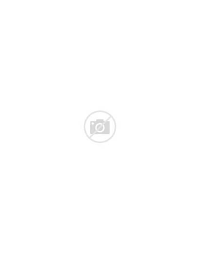 Fish Scary Sea Under Rocks Near Vector