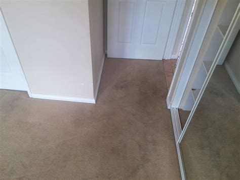 M&co Cleaining 100% Satistaction Dry Wet Carpet Underlay How To Install Tiles With Padding Can You Put On Concrete Do Get Red Wine Stains Out Of A White Best Way Clean Your Carpets By Yourself Save Mart Cleaner Installing Over Tile Floor Oscars 2018 And Worst Dressed