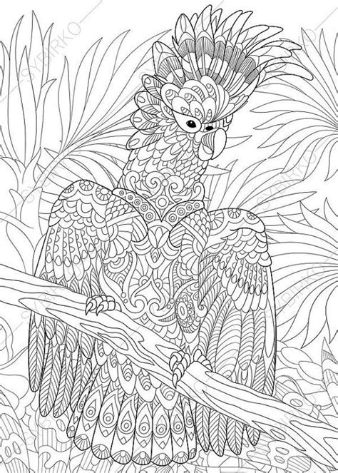 coloring pages  adults cockatoo parrot adult coloring