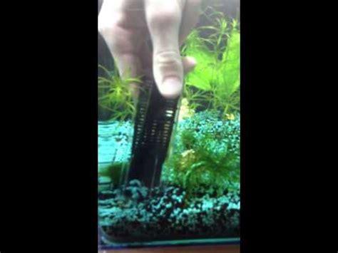 comment nettoyer gravier d aquarium la r 233 ponse est sur