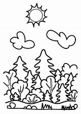 Forest Coloring Drawing Pages Sky Drawings Coloringsky Boy sketch template