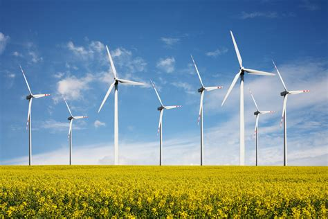 appeals north carolinas  wind farm starts