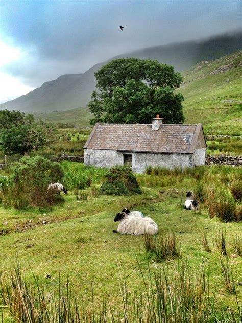 Cottage Ireland Galway Ireland Cottage In And On