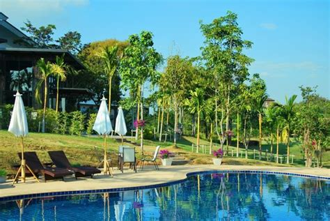 Swimming Pool Picture Of Chiangmai Inthanon Golf