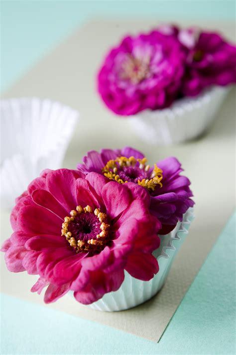 vasi per piante fai da te fai da te vasi piante e fiori donna moderna