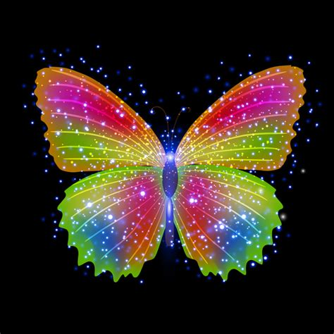 Colorful Images Free Colorful Butterfly Vector Free Vector