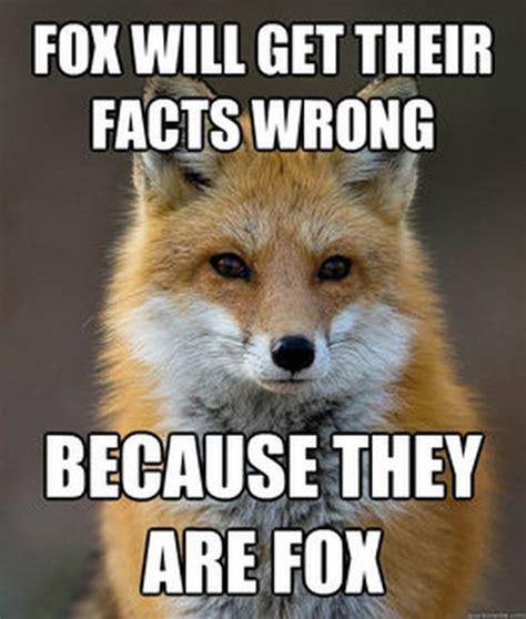 Fox Memes - fun fact fox meme 60 pics