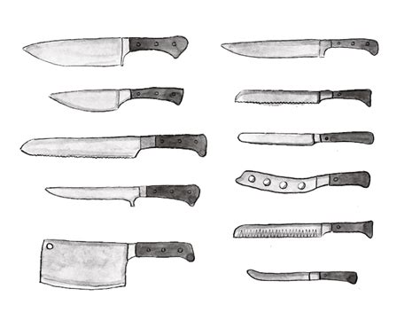 Types Of Kitchen Knives by Different Types Of Knives An Illustrated Guide