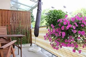 Balkon Gestaltungsideen Pflanzen : blog 1 balkonbepflanzung sichtschutz ~ Lizthompson.info Haus und Dekorationen