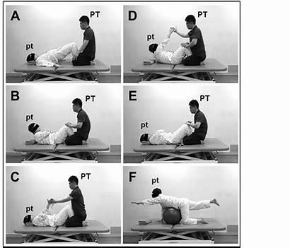 Stroke Exercises Exercise Trunk Gait Program Truncal