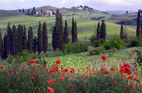 tuscan landscaping tuscan landscape pixdaus