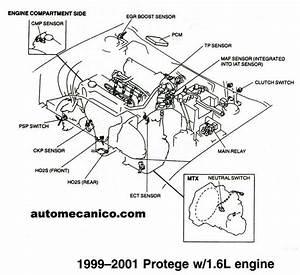 Mazda Sensores Y Componentes Mecanica Automotriz