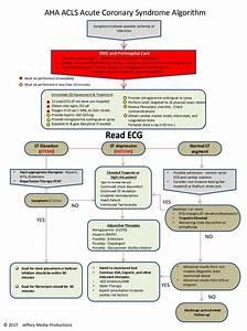 Acls Algorithm Overview