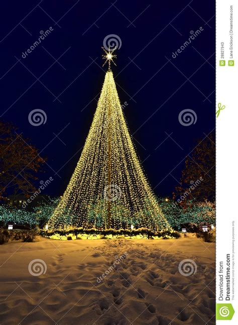 tree made of lights stock photos image 28827943