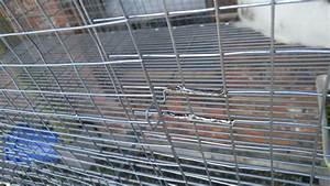 Diy Rabbit Cage  For Door Latch I Just Bend A Piece Of