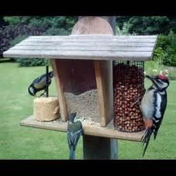 Mangeoire Pour Oiseaux Jardin Plan by 1000 Id 233 Es Sur Le Th 232 Me Mangeoires 192 Oiseaux Sur Pinterest
