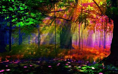 Forest Wallpapers Colors Widescreen Artistic Pc Nu