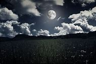 Night Sky with Moon Landscape