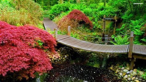 japanese garden   jpg