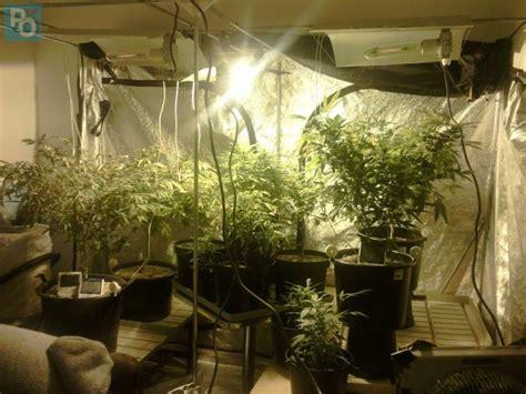 chambre culture cannabis loire atlantique il ne louait un appartement que pour y